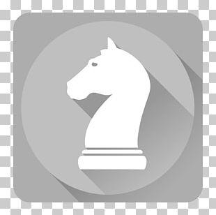 Horse Like Mammal Fictional Character Illustration PNG