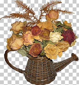 Cut Flowers Flower Bouquet Garden Roses Floristry PNG