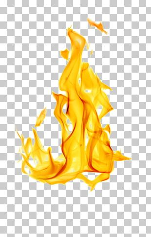 Flame Fire White Stock Photography PNG