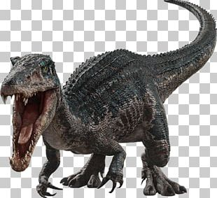 Baryonyx Tyrannosaurus Jurassic Park III: Park Builder Franklin Webb PNG