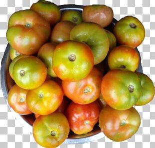 Tomato Vegetarian Cuisine Natural Foods Accessory Fruit PNG