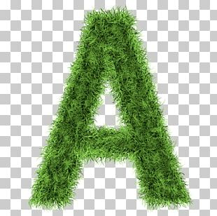 Letter Stock Photography Alphabet PNG