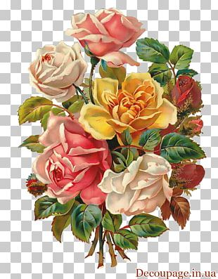 Flower Bouquet Rose Floral Design PNG