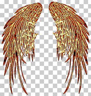 Angel Devil Demon PNG