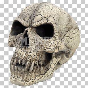 Skull Vampire Human Skeleton Gothic Fashion Head PNG