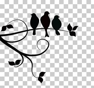 Three Little Birds Silhouette PNG
