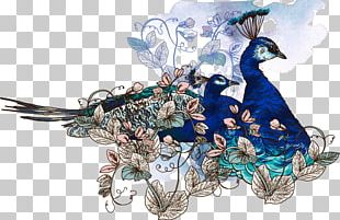 Bird Paper Peafowl Illustration PNG