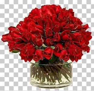 Rose Vase Red PNG