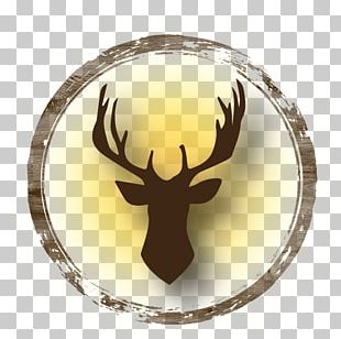 Reindeer Loire Valley Antler Ecotourism PNG