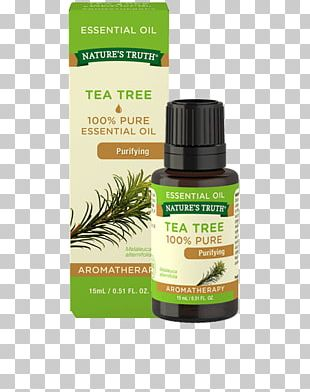 Tea Tree Oil Essential Oil Aromatherapy PNG