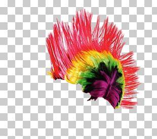 Wig Punker Rainbow PNG