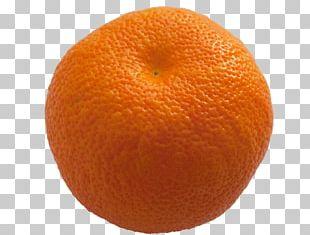 Clementine Mandarin Orange Tangerine Tangelo Blood Orange PNG