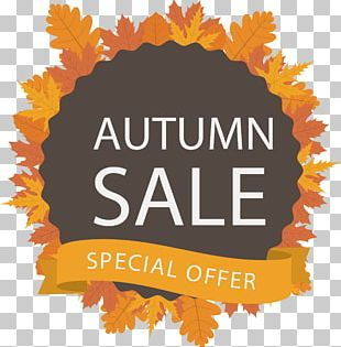 Autumn Stock Photography Illustration PNG