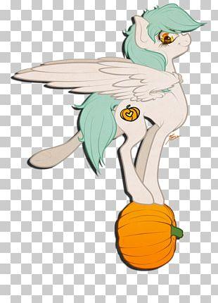 Duck Horse Bird PNG