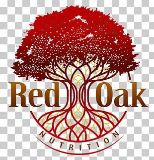 Logo Northern Red Oak Tree Root PNG