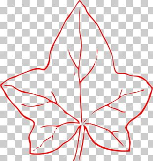 Common Ivy Leaf PNG