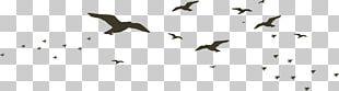 Beak Black And White Technology Pattern PNG