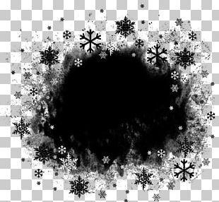 Portable Network Graphics Adobe Photoshop JPEG Raster Graphics Editor PNG