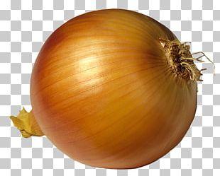 French Onion Soup Potato Onion Red Onion PNG