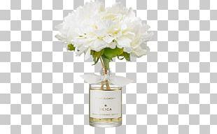 Cut Flowers Floral Design Floristry Vase PNG