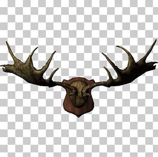 Elk Moose Trophy Hunting Horn PNG