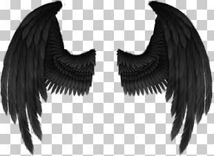 Cherub Angel Wing Fantasy PNG