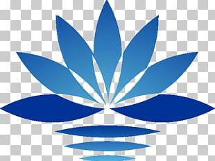 Logo Shape Diversey PNG