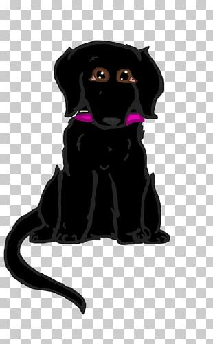 Labrador Retriever Puppy Dog Breed Companion Dog Cat PNG