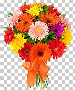 Flower Bouquet Floristry Transvaal Daisy Flower Delivery PNG