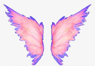 Hand-painted Pink Wings PNG