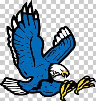 Auburn University Auburn High School Auburn Tigers Football Mascot War Eagle PNG