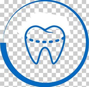 Dentistry Bridge Dental Implant Human Tooth PNG