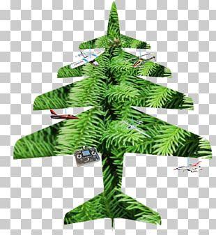 Fir Christmas Ornament Christmas Tree Pine Evergreen PNG