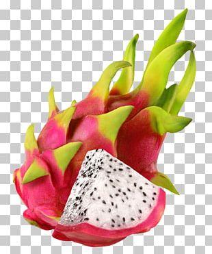 Ice Cream Juice Dried Fruit Pitaya PNG