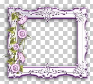Frames Photography GIMP PNG