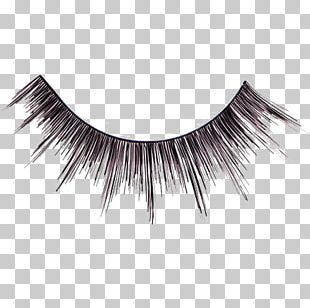 Eyelash Extensions Cosmetics Hair Eyelash Curlers PNG