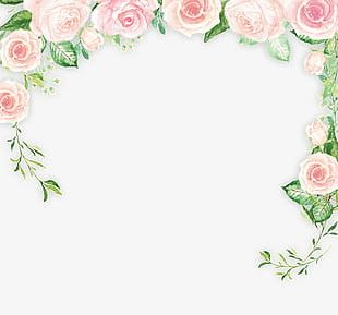 Small Fresh Flowers Background Material PNG