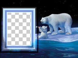 Coca-Cola Baby Polar Bear PNG