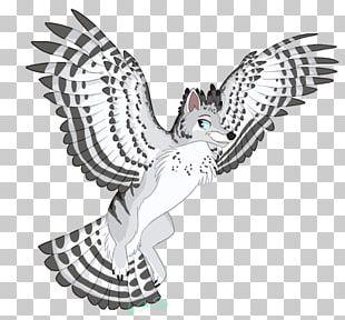 Owl Fauna Illustration Beak PNG