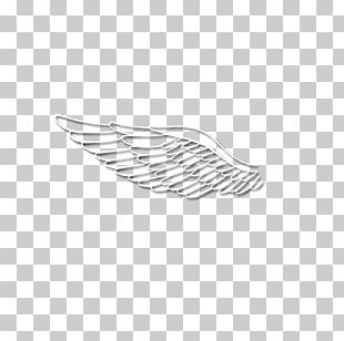 Feather White Line Wing Angle PNG