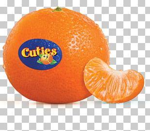 Orange Juice Mandarin Orange Clementine Fruit Salad PNG