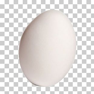 Domestic Goose Egg PNG