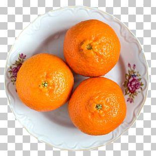 Mandarin Orange Tangerine Clementine Tangelo Rangpur PNG