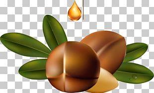 Argan Oil Cosmetics Skin Care PNG