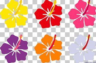 Hawaiian Hibiscus Flower Hawaiian Hibiscus PNG