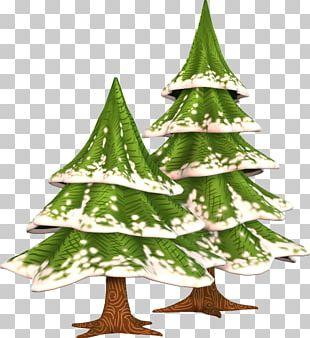 Christmas Tree Diary Quotation Yolki PNG