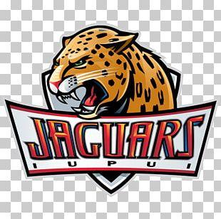 Indiana University – Purdue University Indianapolis IUPUI Jaguars Men's Basketball Indiana University – Purdue University Fort Wayne Summit League PNG