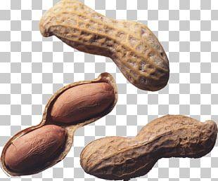 Nut Roast Peanut Allergy Tree Nut Allergy PNG
