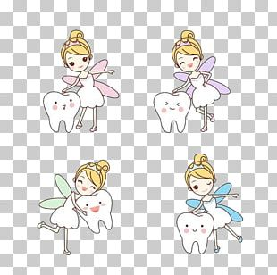Tooth Fairy Human Tooth Dentist PNG
