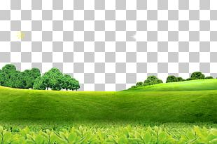 Poster Screensaver High-definition Television PNG